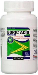 boric acid to kill termites