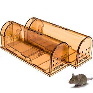 humane mouse trap
