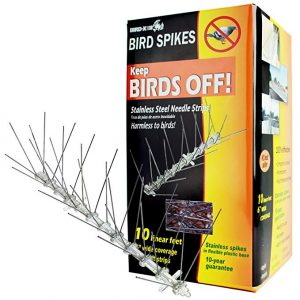 Bird-X Stainless Steel Bird Spikes Kit to keep woodpeckers away.