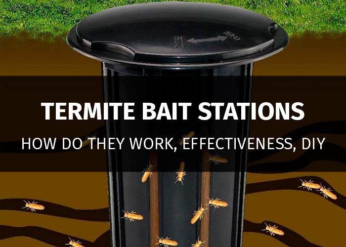 The 5 Best Termite Bait Stations For Termite Control 2018