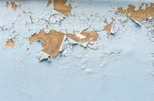 termite bubbling paint