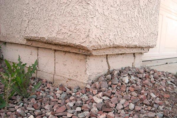 termite tunnel on the bricks