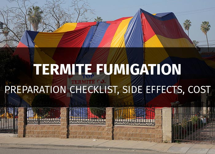 termite fumigation