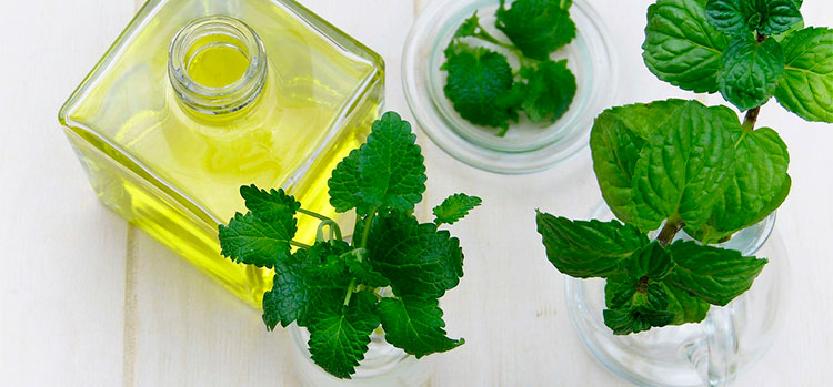 peppermint oil to get rid of mice